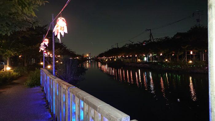 金魚ちょうちん 江戸川区