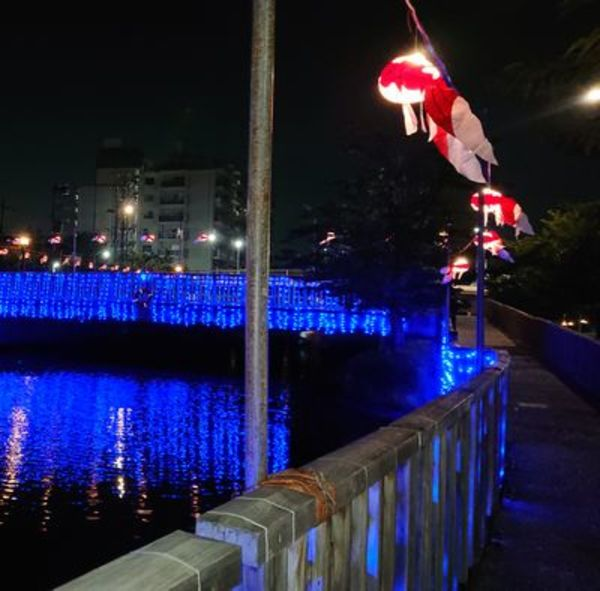 金魚ちょうちん|江戸川区新川さくら館